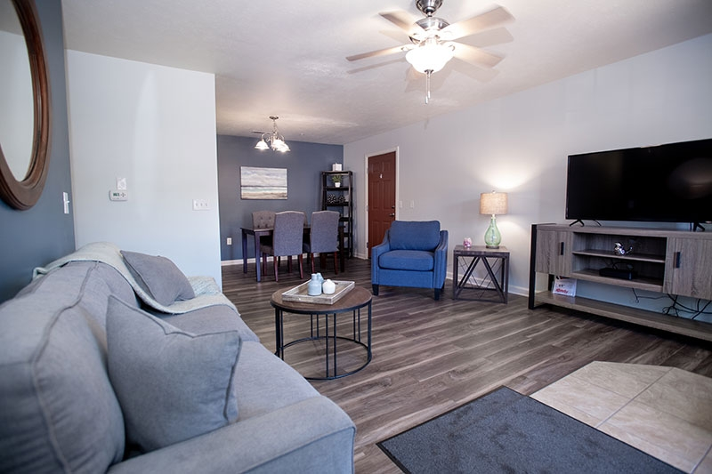 Interior view of living room in Chesapeake apartments.